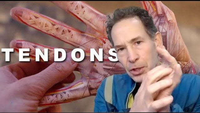 Climbers' Tendon Injuries and What Causes Them